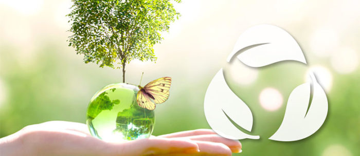 Pulizie e Sanificazioni Ecosostenibili: K-All ottiene la Certificazione Ambientale ISO 14001:2015