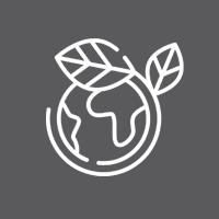 atomizzatore per sanificazione biodegradabile green